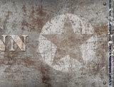 detail muursticker ster roest